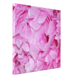 Lienzo Flor rosada bonita del Peony