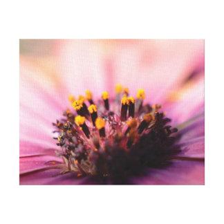 Lienzo Flor rosada y amarilla de la foto hermosa del