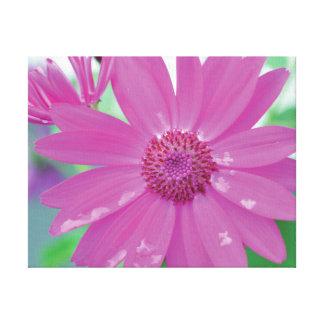 Lienzo Flor vibrante del rosa de la foto del primer en
