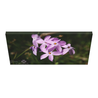 Lienzo Flores de la montaña púrpura