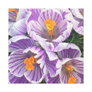 Lienzo flores de la primavera