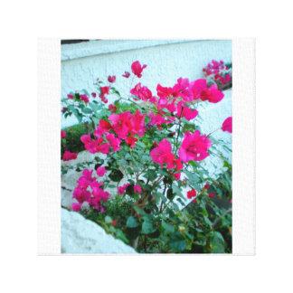 Lienzo Flores de las rosas fuertes del centro turístico