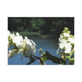 Lienzo Flores en el lago