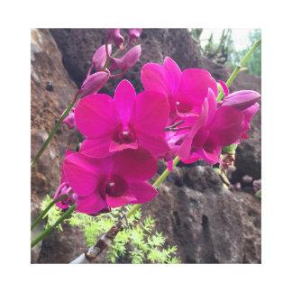 Lienzo Flores hawaianas rosadas