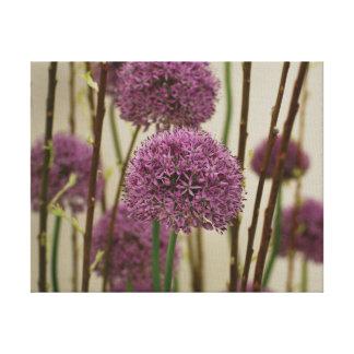 Lienzo Flores púrpuras del allium de la foto hermosa del