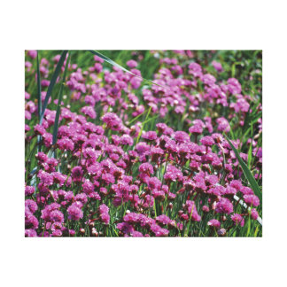 Lienzo Flores y agua hermosas del rosa de la foto del