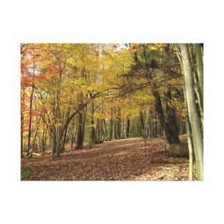 Lienzo Follaje colorido Canfield Ohio del otoño de la