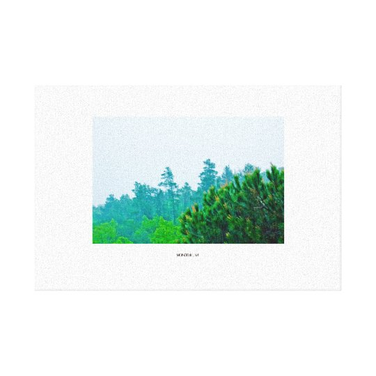 "Lienzo ""Forest rain"""