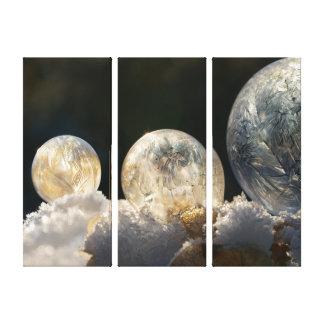 Lienzo Foto fresca congelada del invierno del cristal de