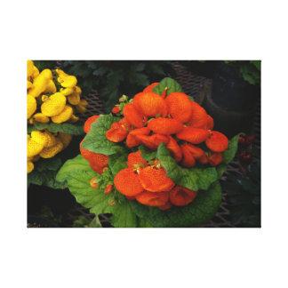 Lienzo Foto roja y amarilla de la flor en lona estirada