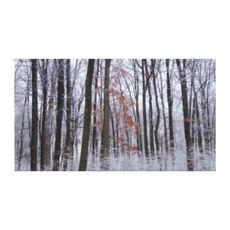 Lienzo Fotografía sacada el polvo nieve del paisaje del