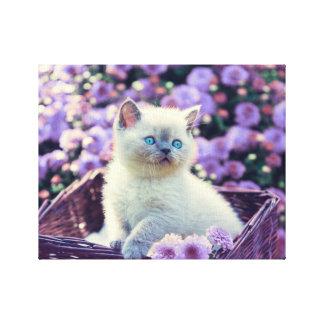 Lienzo Gato observado azul del gatito en cesta con las