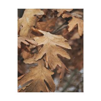 Lienzo Hojas de otoño