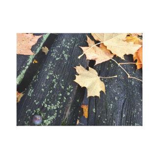 Lienzo Hojas rústicas de la caída en la madera