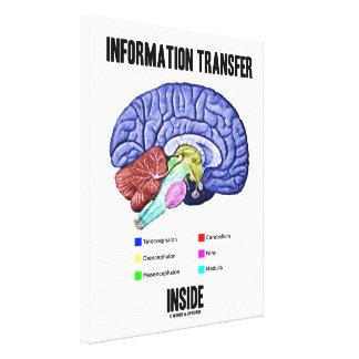 Lienzo Humor interior de la anatomía del cerebro de la