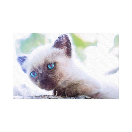 Lienzo Kitty