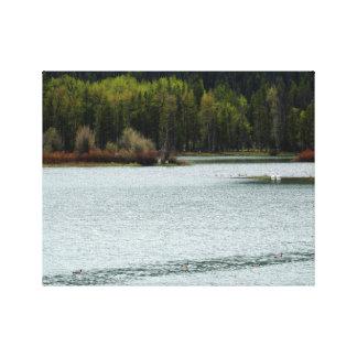 Lienzo Lago hermoso en naturaleza