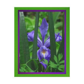Lienzo Lámina - Flor de Iris del en de Arte Impresión En Lona