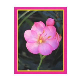 Lienzo Lámina - Flor Rosa del en de Arte Lona Envuelta Para Galerias
