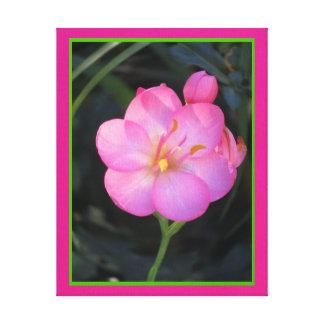 Lienzo Lámina - Flor Rosa del en de Arte Impresion De Lienzo