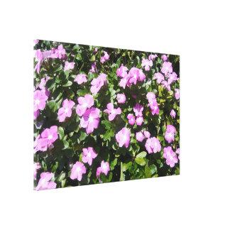 Lienzo Las flores rosadas hermosas del bígaro imprimen