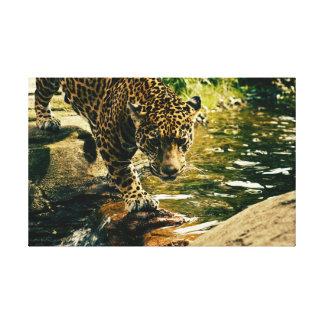 Lienzo Leopardo en el agua