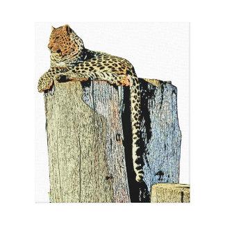 Lienzo Leopardo que descansa sobre un registro