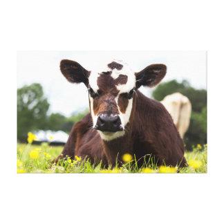 Lienzo Lona de la vaca