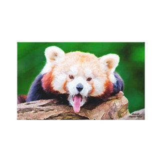 Lienzo Lona de pintura al óleo de la panda roja