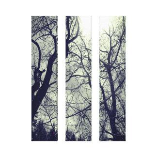 Lienzo Lona negra y blanca del sol abstracto del árbol de