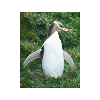 Lienzo Lona observada amarillo en peligro del pingüino