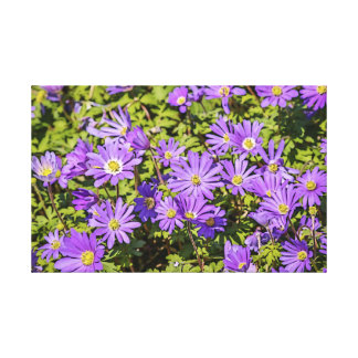 Lienzo Lona púrpura de la flor