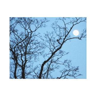 Lienzo Luna Llena en el árbol