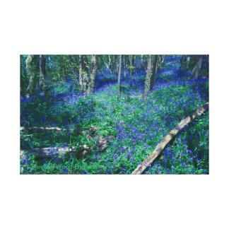 Lienzo Madera Inglaterra del Bluebell
