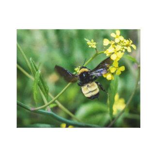 Lienzo Manosee la abeja en vuelo