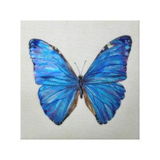 Lienzo Mariposa azul de Morpho