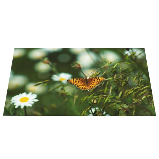 Lienzo Mariposa pacífica del Fritillary