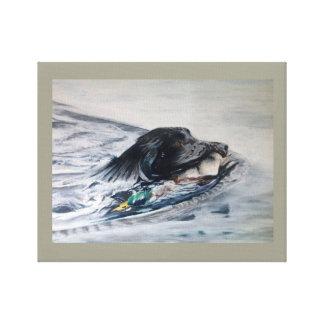 Lienzo natación Labrador que recupera el pato