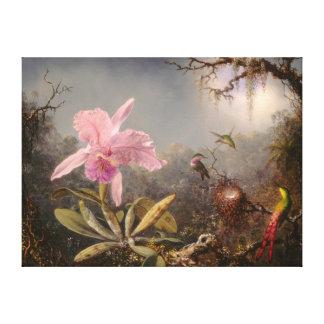 Lienzo Orquídea de Cattleya y tres colibríes