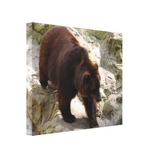 Lienzo Oso grizzly