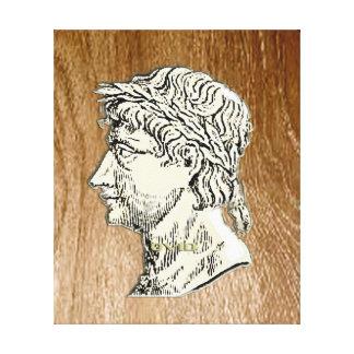 Lienzo Ovid