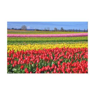 Lienzo Paisaje colorido de los tulipanes