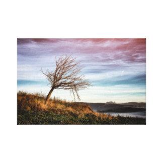 Lienzo Paisaje colorido místico y árbol torcido