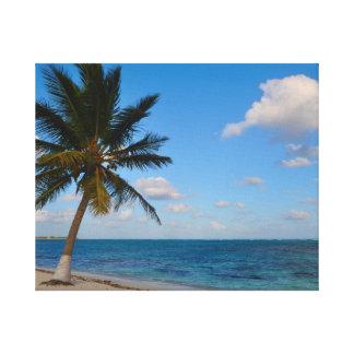 Lienzo Palmera en una playa