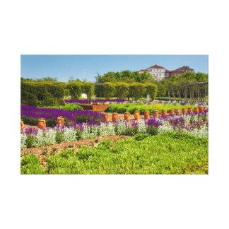 Lienzo pasillo de las flores del sabio púrpura y del