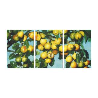 Lienzo Peras de bartlett de maduración por el apilador de