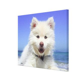 Lienzo Perro de caniche blanco lindo que miente en la