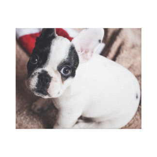 Lienzo Perro de Papá Noel - barro amasado divertido -