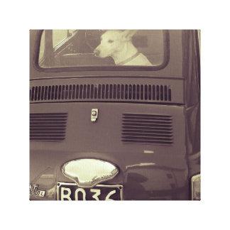 Lienzo Perro en el coche