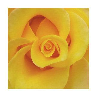 Lienzo Pétalos color de rosa amarillos románticos